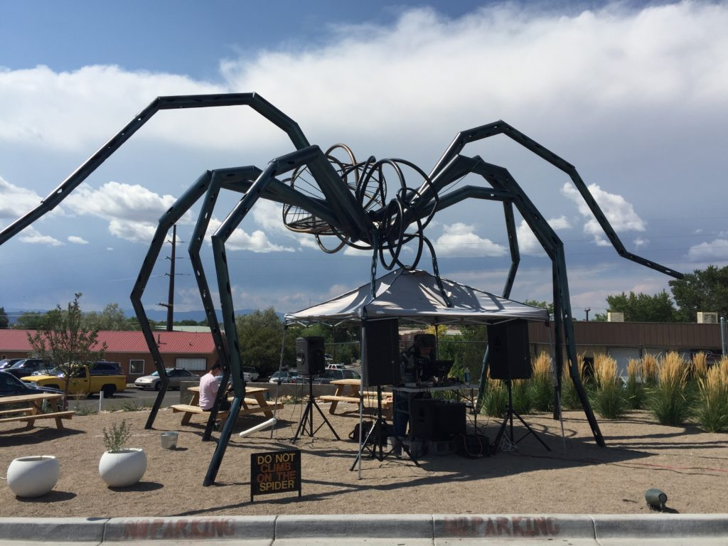 The Meow Wolf Spider